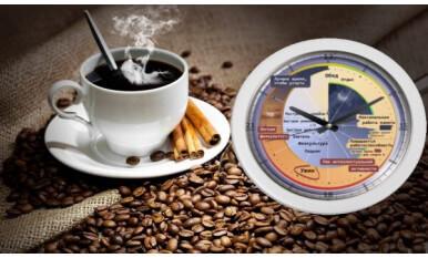 Учёные выяснили кофе сбивает биологические часы человека